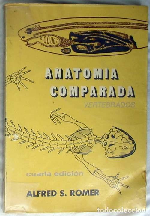 anatomia comparada (vertebrados) - alfred s. ro - Comprar Libros de ...