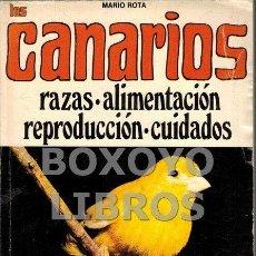 Libros de segunda mano: ROTA, MARIO. CANARIOS. RAZAS. ALIMENTACIÓN. REPRODUCCIÓN. CUIDADOS. Lote 67904713