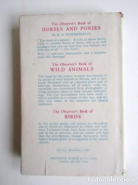 Libros de segunda mano: LIBRITO INGLÉS SOBRE LOS PERROS, 148 ILUSTRACIONES Y 300 RAZAS Y VARIEDADES, AÑO 1945 - Foto 3 - 68230897