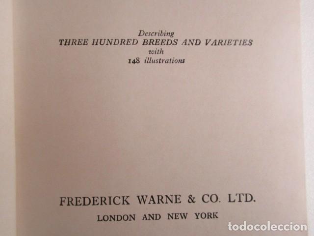 Libros de segunda mano: LIBRITO INGLÉS SOBRE LOS PERROS, 148 ILUSTRACIONES Y 300 RAZAS Y VARIEDADES, AÑO 1945 - Foto 8 - 68230897