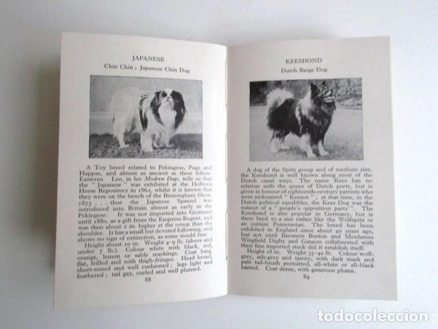 Libros de segunda mano: LIBRITO INGLÉS SOBRE LOS PERROS, 148 ILUSTRACIONES Y 300 RAZAS Y VARIEDADES, AÑO 1945 - Foto 9 - 68230897