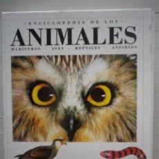 Libros de segunda mano: ENCICLOPEDIA DE LOS ANIMALES - CAM. Lote 69020333