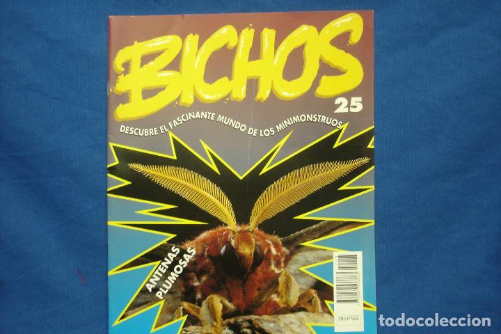 FASCICULO BICHOS Nº 25 - PLANETA DEAGOSTINI 1994 (Libros de Segunda Mano - Ciencias, Manuales y Oficios - Biología y Botánica)