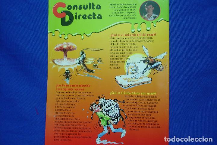 Libros de segunda mano: FASCICULO BICHOS Nº 25 - PLANETA DeAGOSTINI 1994 - Foto 2 - 70042433