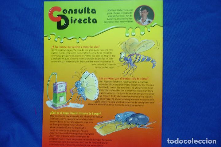 Libros de segunda mano: FASCICULO BICHOS Nº 39 - PLANETA DeAGOSTINI 1994 - Foto 2 - 70043037