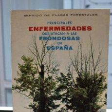 Libros de segunda mano: PRINCIPALES ENFERMEDADES QUE ATACAN A LAS FRONDOSAS EN ESPAÑA, PLAGAS FORESTALES. 1964. 75 PAGINAS. Lote 72151343