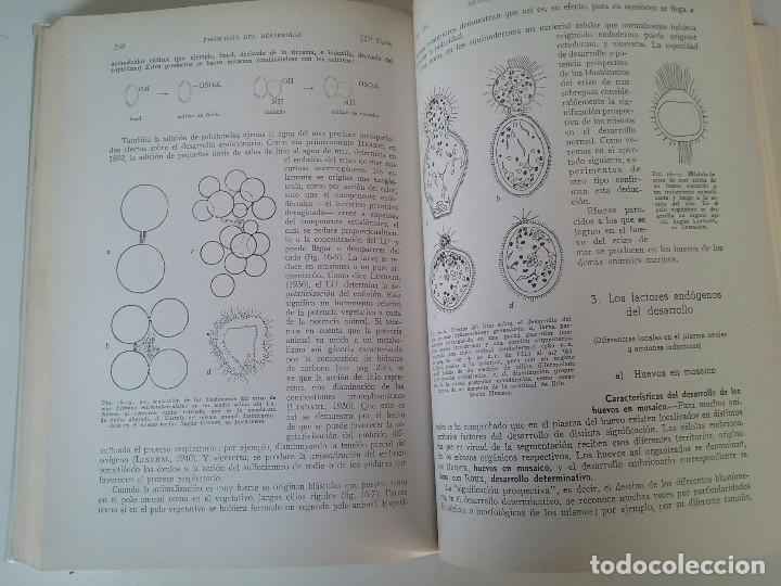 Libros de segunda mano: BIOLOGÍA GENERAL I Y II (2 VOLÚMENES) - SALUSTIO ALVARADO (13ª ED. 1974) - Foto 6 - 74445035