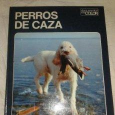 Libros de segunda mano: PERROS DE CAZA-EDITORIAL TEIDE-TAMAÑO ALBUN. CALIDAD FOTOGRAFICA.. Lote 75023063