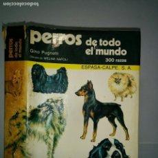 Libros de segunda mano: PERROS DE TODO EL MUNDO 300 RAZAS 1979 GINO PUGNETTI 1ª EDICIÓN ESPASA-CALPE MANUALES ESPASA. Lote 75771371