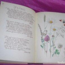 Libros de segunda mano: LA FELICIDAD DE VIVIR CON LA NATURALEZA. FACSÍMIL EL DIARIO DE EDITH HOLDEN 1 EDICION 1979 PRECIOSO. Lote 77287229