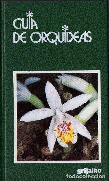 GUÍA DE ORQUÍDEAS (GRIJALBO, 1997) (Libros de Segunda Mano - Ciencias, Manuales y Oficios - Biología y Botánica)