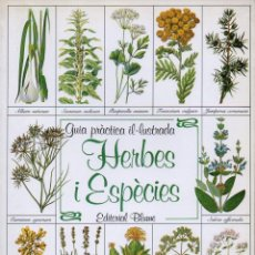 Libros de segunda mano: GUÍA PRÀCTICA IL.LUSTRADA HERBES I ESPÈCIES (BLUME, 1983) EN CATALÁN. Lote 77349433