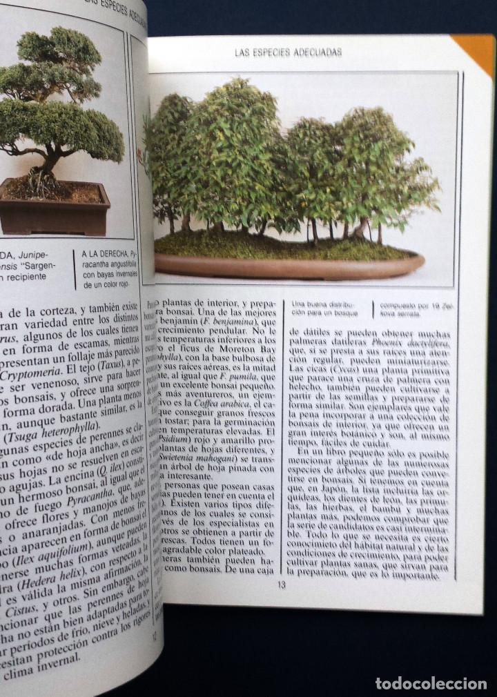 Libros de segunda mano: Guía Jardin BONSAI - Anne Swinton Editorial Blume SA - Foto 2 - 77364229