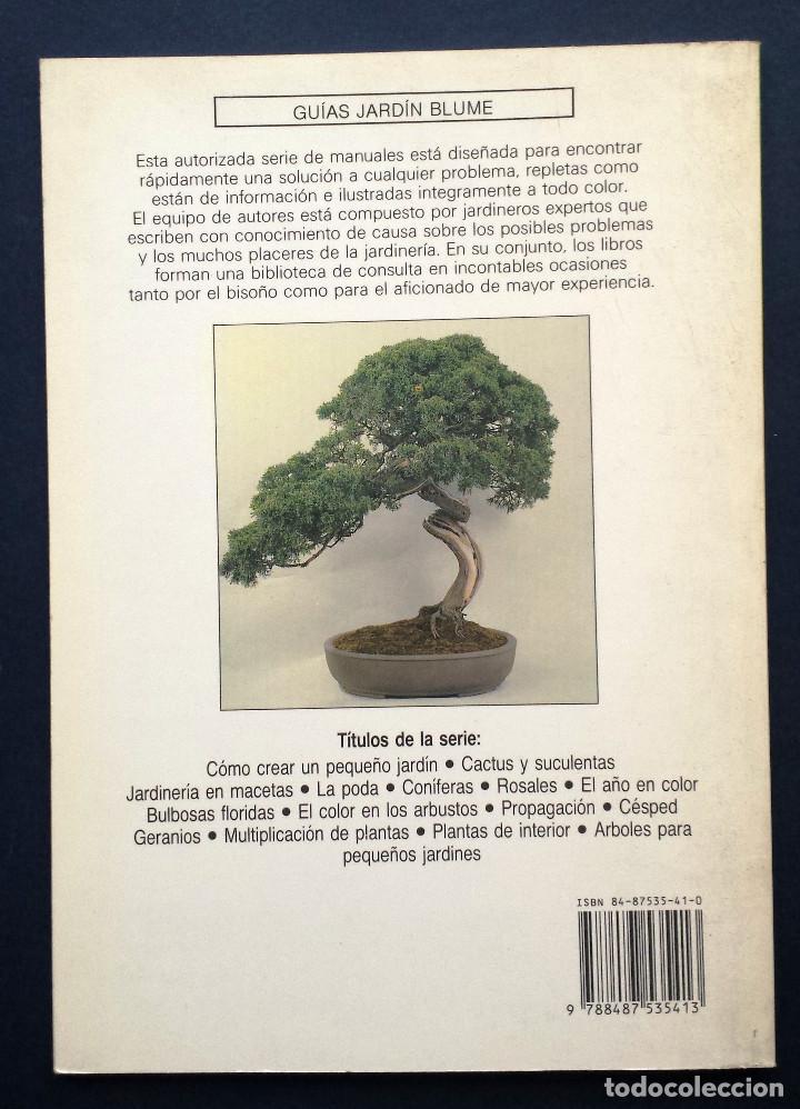 Libros de segunda mano: Guía Jardin BONSAI - Anne Swinton Editorial Blume SA - Foto 3 - 77364229