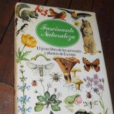 Libros de segunda mano: FASCINANTE NATURALEZA GRAN LIBRO DE ANIMALES Y PLANTAS DE EUROPA - GRAN ILUSTRACION. Lote 78273193
