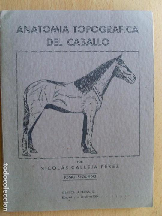 anatomía topográfica del caballo / 2º tomo / ni - Comprar Libros de ...