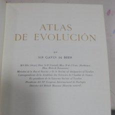 Libros de segunda mano: ATLAS DE EVOLUCION. SIR GAVIN DE BEER. EDICIONES OMEGA. 1970. BARCELONA. Lote 80794747