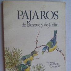 Libros de segunda mano: PAJAROS DE BOSQUE Y JARDIN . DE ALAN MITCHELL E ILUSTRACIONES DE TERENCE LAMBERT.. Lote 81724564