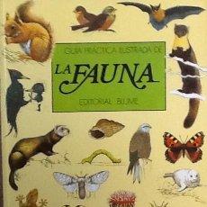 Libros de segunda mano: GUÍA PRÁCTICA ILUSTRADA DE LA FAUNA. EDITORIAL BLUME . Lote 81921564