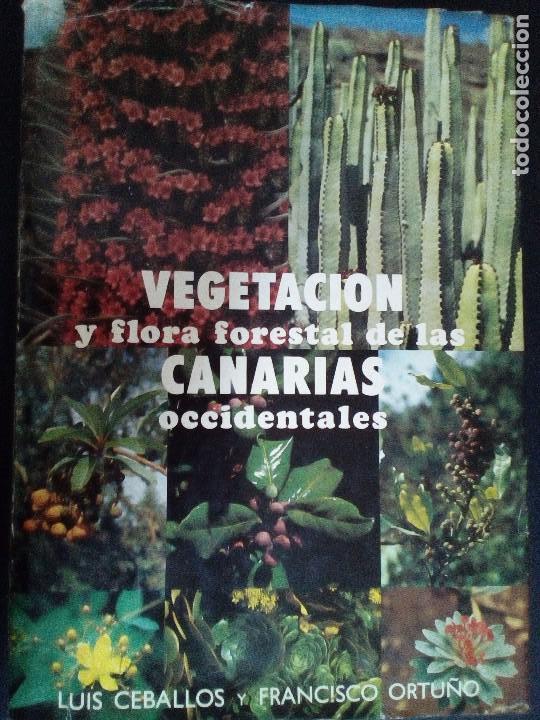 VEGETACIÓN Y FLORA FORESTAL DE LAS CANARIAS OCCIDENTALES (Libros de Segunda Mano - Ciencias, Manuales y Oficios - Biología y Botánica)