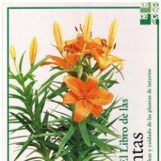 Libros de segunda mano: EL LIBRO DE LAS PLANTAS - IDEAS Y CUIDADO DE LAS PLANTAS DE INTERIOR. Lote 83948444