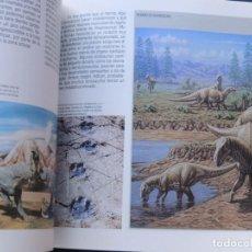 Libros de segunda mano: HISTORIA DE LA VIDA / CONSEJO SUPERIOR INVESTIGACIONES CIENTIFICAS 1991 / VV.AA. / PALEONTOLOGIA. Lote 124850142