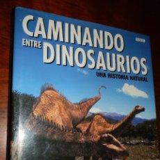 Libros de segunda mano: CAMINANDO ENTRE DINOSAURIOS,1999,TIM HAINES,288 PP,CARTON. Lote 84969532