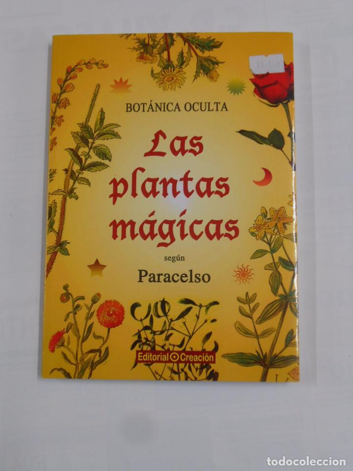BOTÁNICA OCULTA: LAS PLANTAS MÁGICAS SEGÚN PARACELSO. RODOLFO PUTZ. TDKLT (Libros de Segunda Mano - Ciencias, Manuales y Oficios - Biología y Botánica)