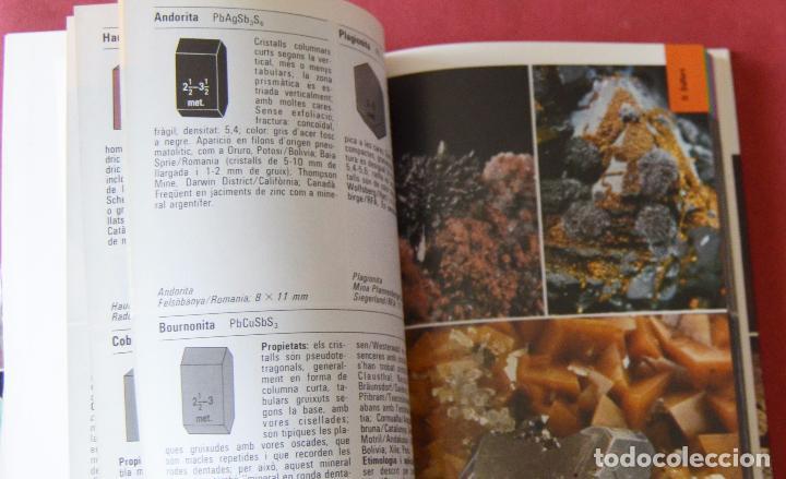 Libros de segunda mano: MINERALS - MINERALES - GUIES DE NATURA BLUME - EN CATALA - MUY ILUSTRADO - 1º EDICION 1983 - Foto 2 - 86535844