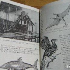 Libros de segunda mano: CIENCIAS NATURALES , SEGUNDO CURSO 1955 - SALUSTIO ALVARADO. Lote 86701024