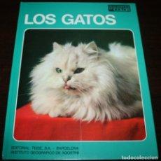 Libros de segunda mano - DOCUMENTAL EN COLOR - LOS GATOS - ED. TEIDE / INST. GEOGRAFICO DE AGOSTINI - 1972 - 88149056