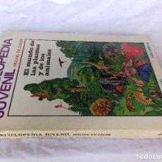 Libros de segunda mano: ENCICLOPEDIA JUVENIL EL MUNDO DE LAS PLANTAS Y DE LOS ANIMALES-EDITORIAL MOLINO-VOLUMEN II. Lote 89019240