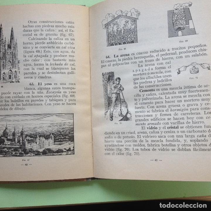 Libros de segunda mano: CIENCIAS FÍSICONATURALES - SEGUNDO GRADO - EDIT. LUIS VIVES - PERÍODO DE PERFECCIONAMIENTO - 1962 - Foto 4 - 90406889