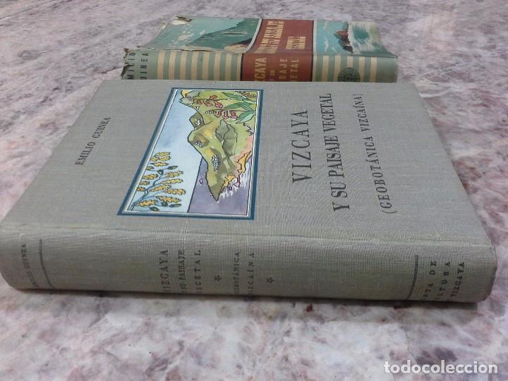 Libros de segunda mano: Vizcaya su paisaje vegetal .1949 - Foto 3 - 90902345