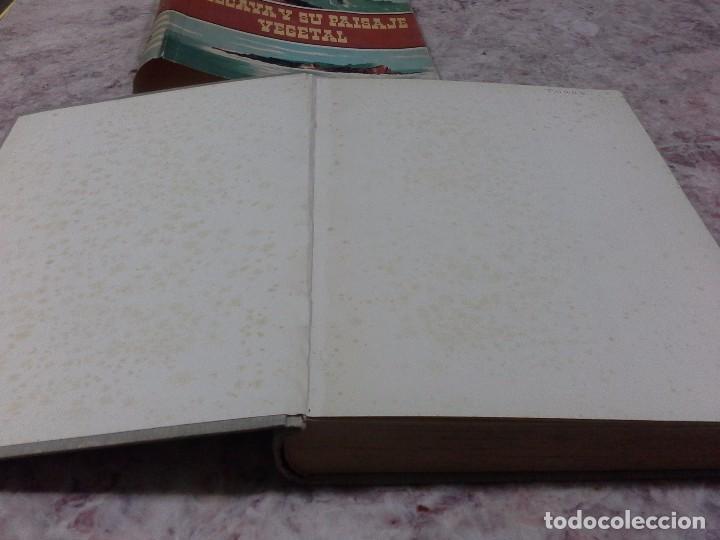 Libros de segunda mano: Vizcaya su paisaje vegetal .1949 - Foto 5 - 90902345