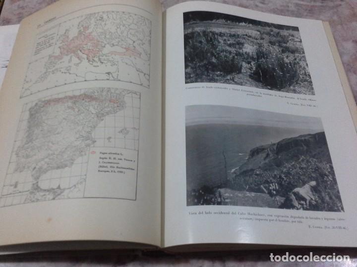 Libros de segunda mano: Vizcaya su paisaje vegetal .1949 - Foto 8 - 90902345