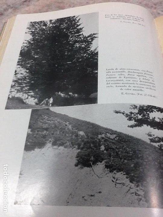 Libros de segunda mano: Vizcaya su paisaje vegetal .1949 - Foto 9 - 90902345