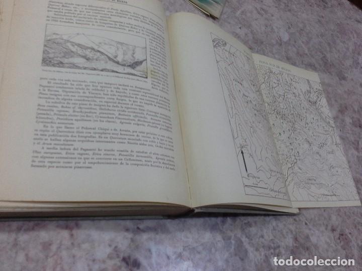 Libros de segunda mano: Vizcaya su paisaje vegetal .1949 - Foto 12 - 90902345