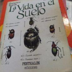 Libros de segunda mano: LA VIADA EN EL SUELO -129 PAG . Lote 91947600