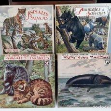 Libros de segunda mano: EDITOR RAMÓN SOPENA. ANIMALES SALVAJES - EL REINO ANIMAL PARA LOS NIÑOS. 4 EJEMPLARES.. Lote 92094380