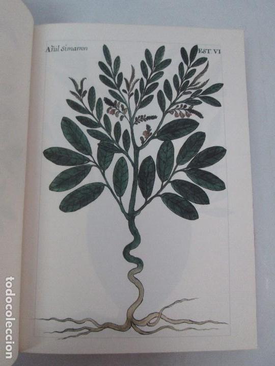 Libros de segunda mano: MARTINEZ COMPAÑON TRUJILLO DEL PERU. TOMO IV Y V. LAMINAS DE PLANTAS. EDICION ESPECIAL PARA MERCASA - Foto 11 - 93346125