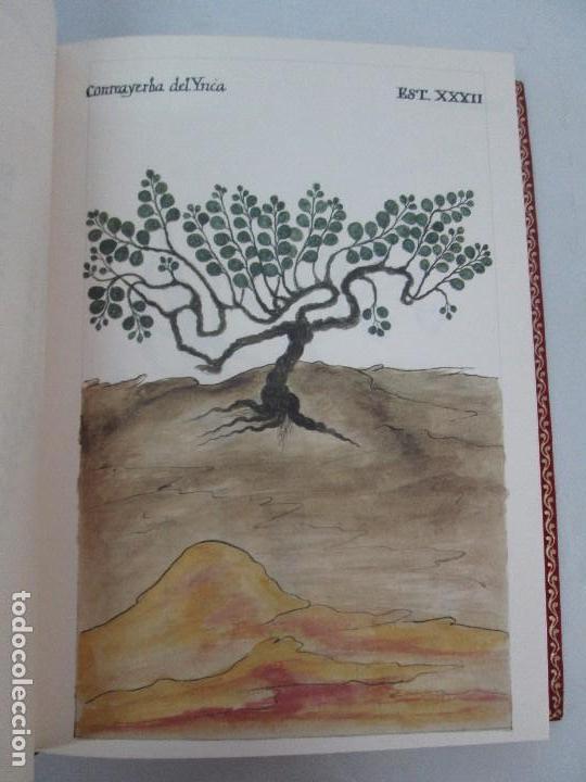 Libros de segunda mano: MARTINEZ COMPAÑON TRUJILLO DEL PERU. TOMO IV Y V. LAMINAS DE PLANTAS. EDICION ESPECIAL PARA MERCASA - Foto 13 - 93346125