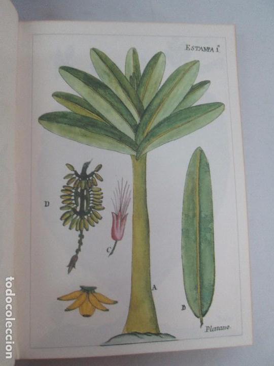 Libros de segunda mano: MARTINEZ COMPAÑON TRUJILLO DEL PERU. TOMO IV Y V. LAMINAS DE PLANTAS. EDICION ESPECIAL PARA MERCASA - Foto 31 - 93346125
