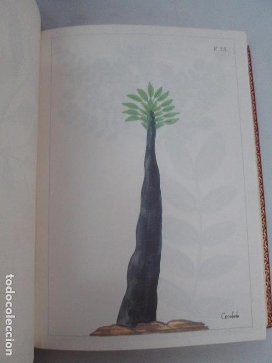 Libros de segunda mano: MARTINEZ COMPAÑON TRUJILLO DEL PERU. TOMO IV Y V. LAMINAS DE PLANTAS. EDICION ESPECIAL PARA MERCASA - Foto 34 - 93346125