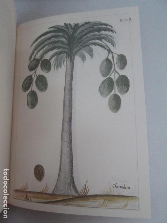 Libros de segunda mano: MARTINEZ COMPAÑON TRUJILLO DEL PERU. TOMO IV Y V. LAMINAS DE PLANTAS. EDICION ESPECIAL PARA MERCASA - Foto 37 - 93346125