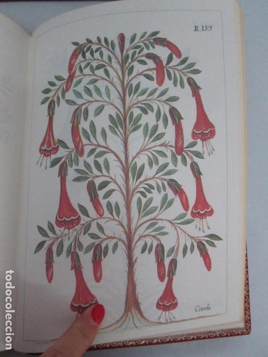 Libros de segunda mano: MARTINEZ COMPAÑON TRUJILLO DEL PERU. TOMO IV Y V. LAMINAS DE PLANTAS. EDICION ESPECIAL PARA MERCASA - Foto 39 - 93346125