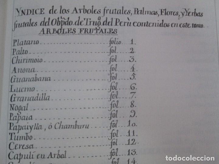 Libros de segunda mano: MARTINEZ COMPAÑON TRUJILLO DEL PERU. TOMO IV Y V. LAMINAS DE PLANTAS. EDICION ESPECIAL PARA MERCASA - Foto 41 - 93346125