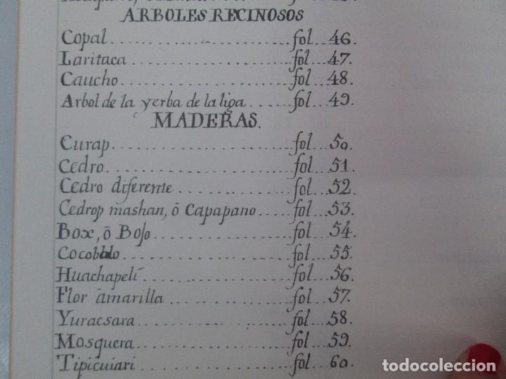 Libros de segunda mano: MARTINEZ COMPAÑON TRUJILLO DEL PERU. TOMO IV Y V. LAMINAS DE PLANTAS. EDICION ESPECIAL PARA MERCASA - Foto 44 - 93346125