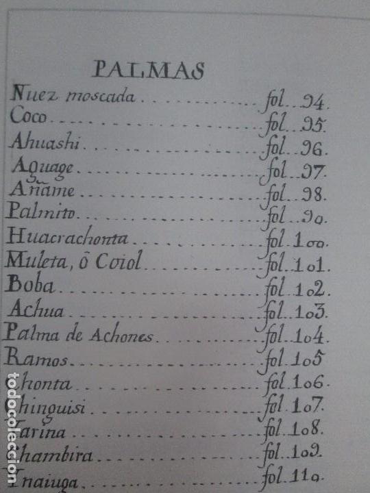 Libros de segunda mano: MARTINEZ COMPAÑON TRUJILLO DEL PERU. TOMO IV Y V. LAMINAS DE PLANTAS. EDICION ESPECIAL PARA MERCASA - Foto 47 - 93346125
