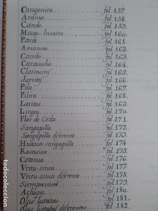 Libros de segunda mano: MARTINEZ COMPAÑON TRUJILLO DEL PERU. TOMO IV Y V. LAMINAS DE PLANTAS. EDICION ESPECIAL PARA MERCASA - Foto 51 - 93346125